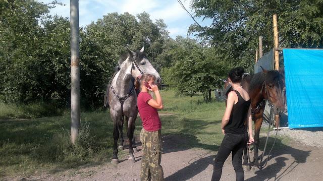 Девушки стоящие около лошадей