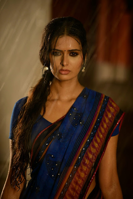 Actress Meenakshi Dixit  Pictures in Adavi Kachina Vennela Movie 0001.JPG