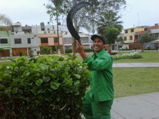 Jardinero el trabajo que da vida for Trabajo jardinero