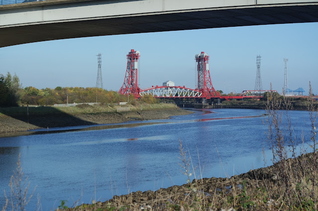 Dog Walk -Teesside - River Tees - Tees Barrage - Newport Bridge