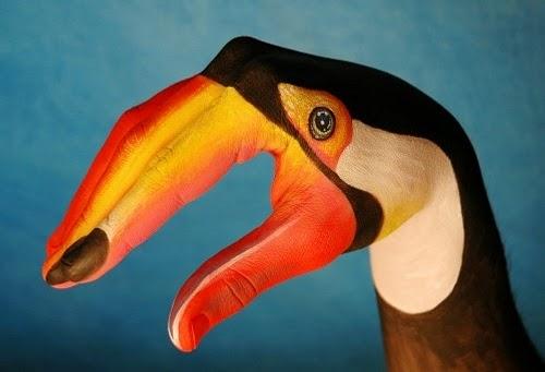 16-Toucan-Guido-Daniele-Artist-Hand-Painting-Italian