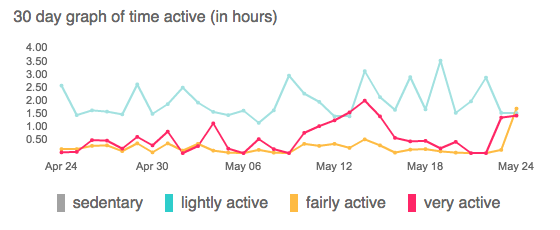 FitBit Activity Level Chart