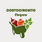 CortoCircuito Flegreo