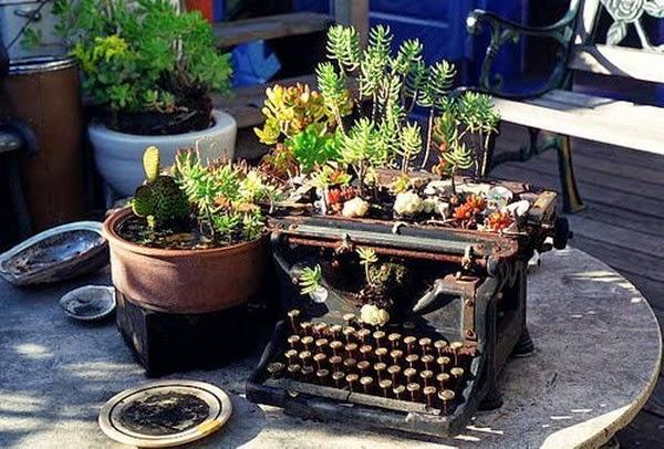 Ideas para la decoración de jardines con cactus | Ideas para decorar