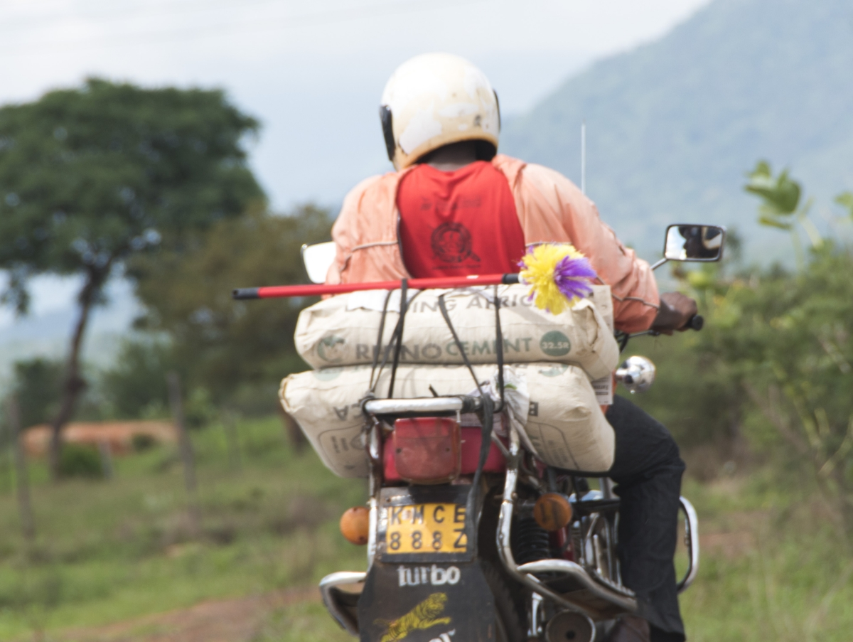 Tsavo, Kenia, Kenya, Reisen, Travel,