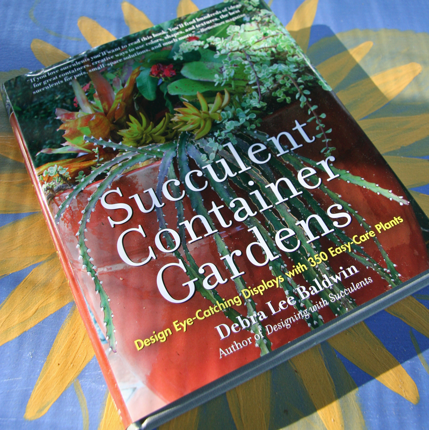 Daffodils daydreams book succulent container gardens by debra lee baldwin - Succulent container gardens debra lee baldwin ...