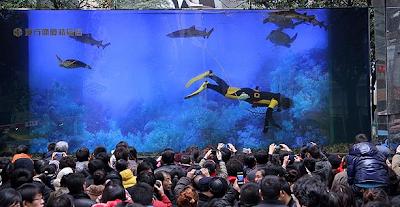 Tanque cheio de tubarões explode num centro comercial