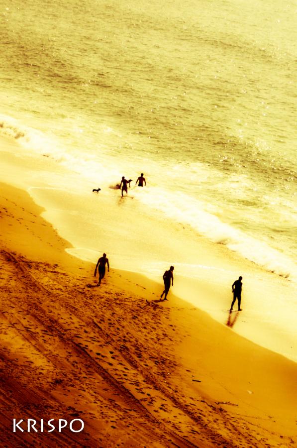Varios bañistas bañaándose y paseando en la playa