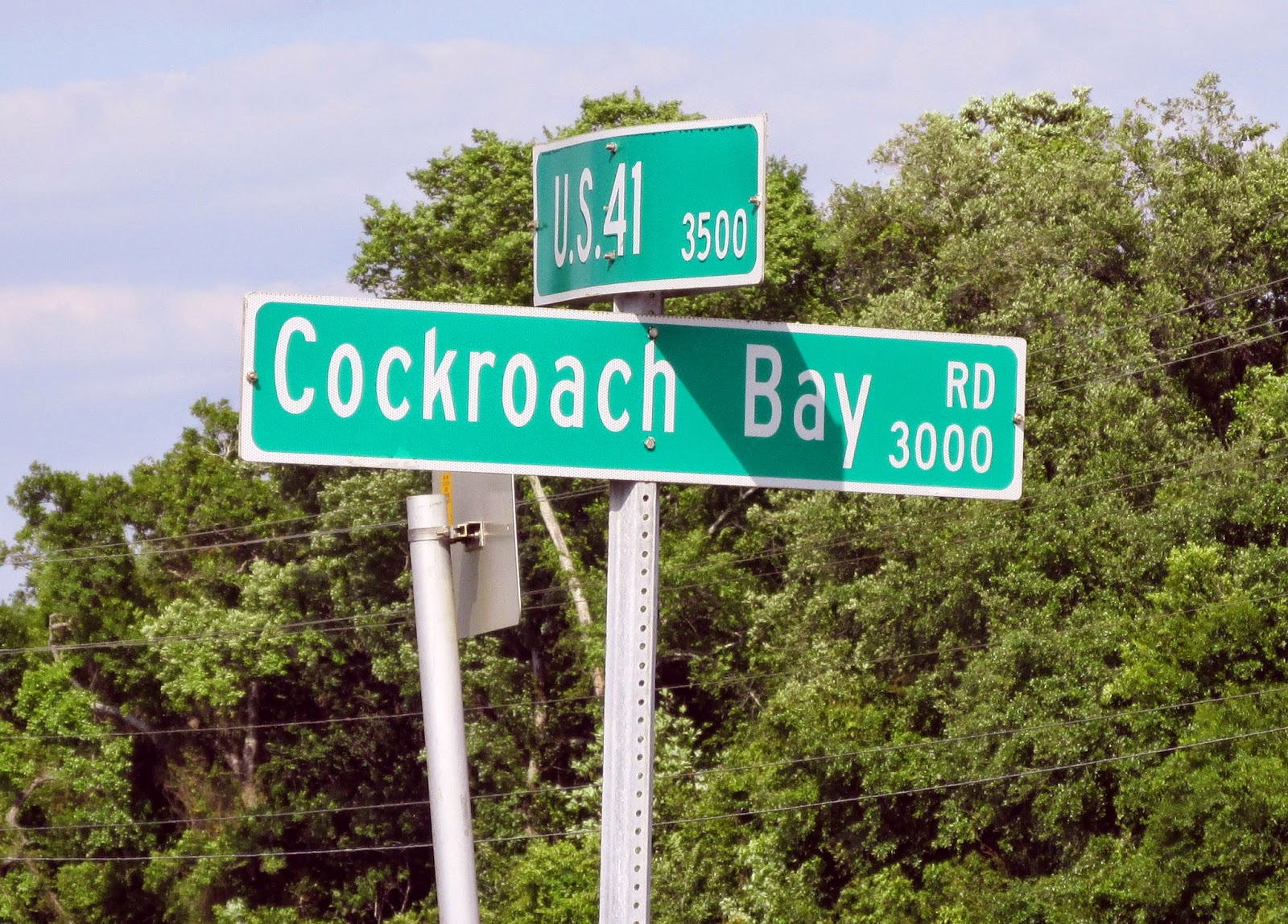Eccentric Street Name of The