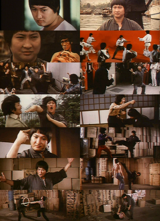Enter the Fat Dragon Starring Sammo Hung
