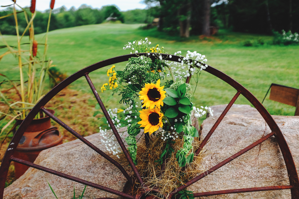 Sunflowers and cattails - Wisconsin Farm Wedding