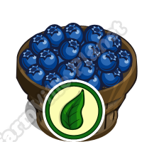FarmVille Organic Blueberry