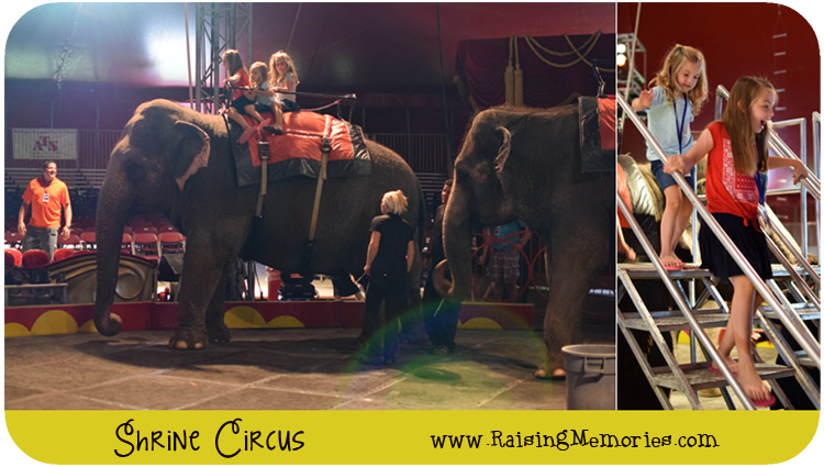 a trip to a circus There are 4 ways to get from the venetian las vegas to circus circus las vegas by bus, taxi, shuttle or foot select an option below to see step-by-step directions and to compare ticket prices and travel times in rome2rio's travel planner.