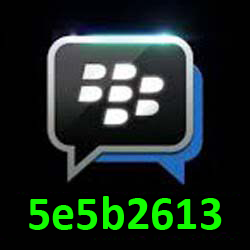 Pin Bbm 5e5b2613
