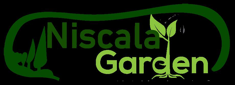 NISCALA GARDEN | Tukang Taman Surabaya