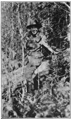 Kathrene Pinkerton climbing over a windfall