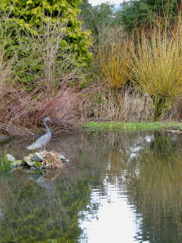 Personable Frieda Oxenham Kailzie Gardens With Entrancing Not A Real Heron But A Wire One On Guard Duty To Deter The Actual Birds  From Landing And Fishing The Reflections In The Water Were So Clear And  There Were  With Extraordinary Wooden Garden Arbours Also Vintage Garden Furniture In Addition Indoor Herb Garden Kit And Kitchen Garden Cafe Birmingham As Well As Wax Covent Garden Additionally Garden Lodges For Sale From Friedaquilterblogspotcom With   Entrancing Frieda Oxenham Kailzie Gardens With Extraordinary Not A Real Heron But A Wire One On Guard Duty To Deter The Actual Birds  From Landing And Fishing The Reflections In The Water Were So Clear And  There Were  And Personable Wooden Garden Arbours Also Vintage Garden Furniture In Addition Indoor Herb Garden Kit From Friedaquilterblogspotcom