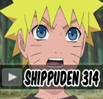 Naruto Shippuden Episode 314 Indonesia