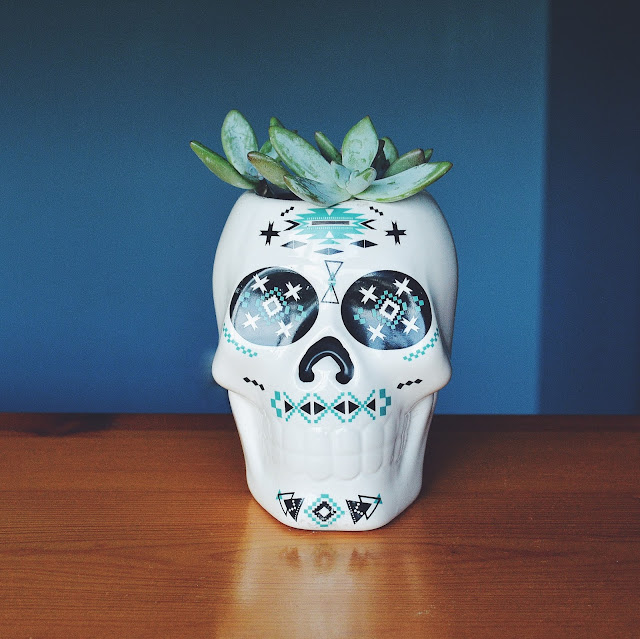 Skull planter | A fickle heart