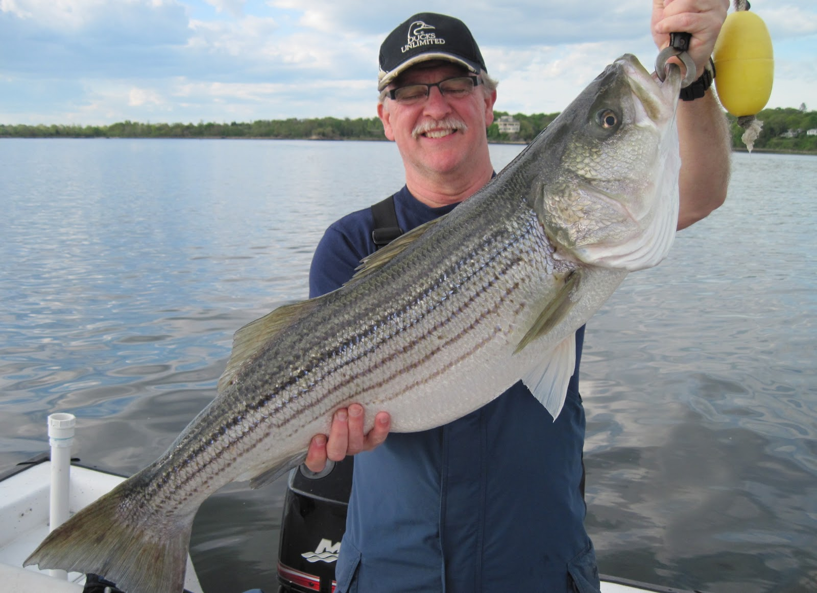 Rhode island striped bass so ya think there are some big for Best striper fishing spot in ri