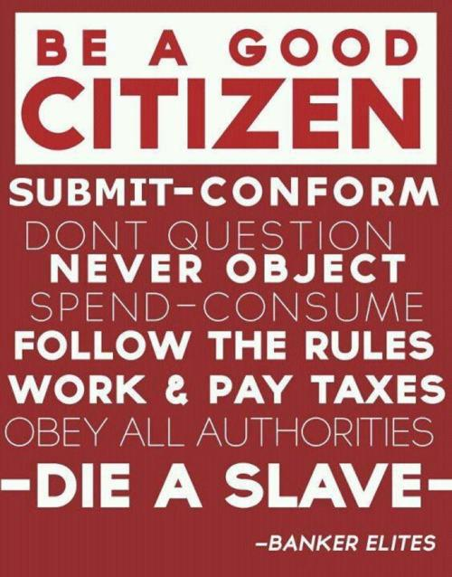 a good citizen how to become a When it comes to the question of good citizenship, plenty of american leaders and laypeople have offered their interpretations in general, being engaged.