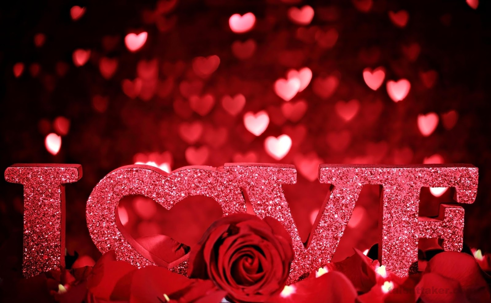 Картинки и фотографии про любовь с надписями