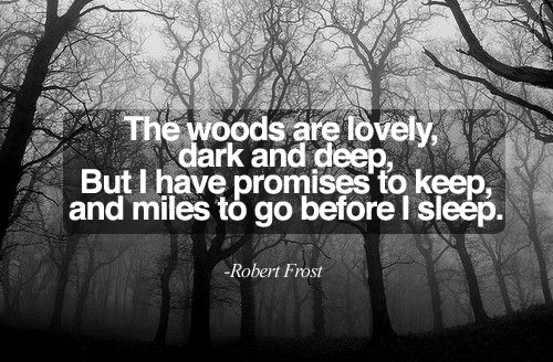 a comparison of stopping by woods on a snowy evening and the road not taken Robert frost reads the road not taken, the pasture, birches, death of a hired   famous poems (fire and ice, stopping by woods on a snowy evening),.
