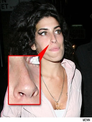 amy winehouse hot photos 05 Amy Winehouse Picture & Photo Gallery