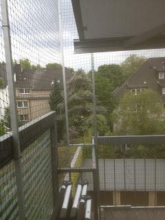Bochum Katzennetz mit Sonnenschutz