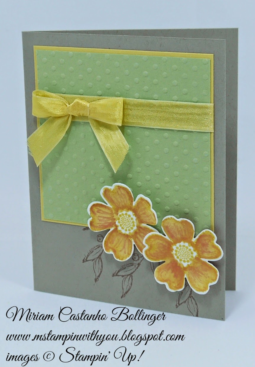 Miriam Castanho Bollinger, mstampinwithyou, stampin up, demonstrator, fms159, flower shop, pansy punch, big shot, perfect polka dot, simply sketched, fms, su