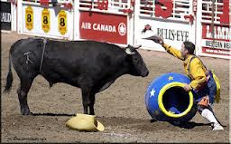 Bosco writin a bull