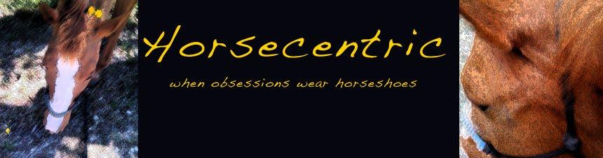 HorseCentric