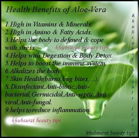Khubsurat beauty tips benefits of aloe vera plant - Aloe vera plant care tips beginners guide ...