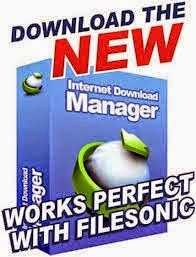IDM Internet Download Manager 6.23 Build 12 Crack Free Download