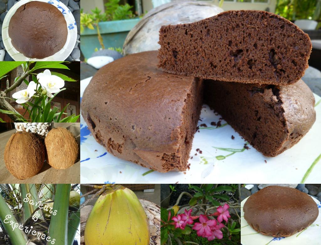 Saveurs et exp riences g teau choco rhum lait de coco - Comment faire du lait de coco ...