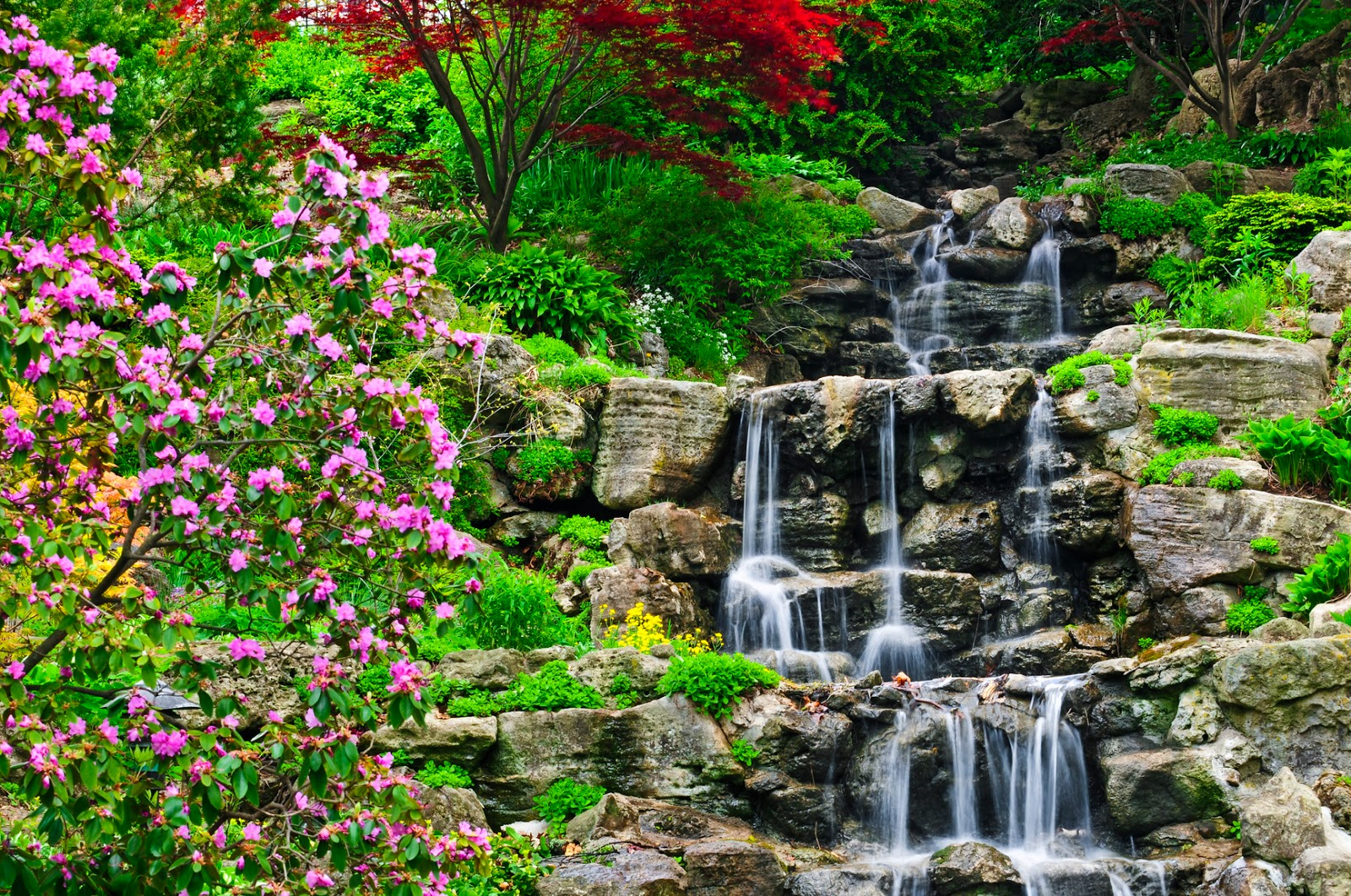 Banco de im genes cascadas de agua cristalina for Cascadas jardin zen