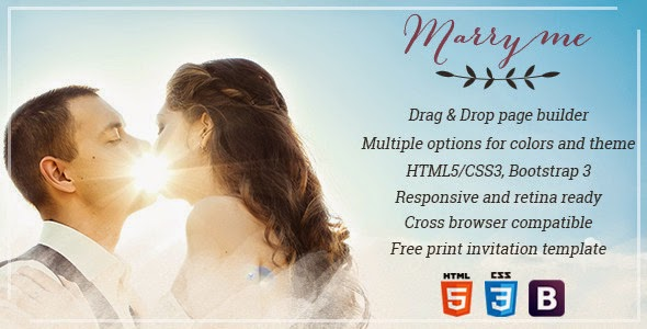 Responsive Wedding & Celebration Theme