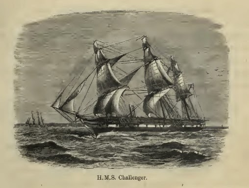 challenger expedition What were the main findings from the challenger voyage challenger expedition essay sample bla bla writing life (380) ocean (53) challenger expedition.
