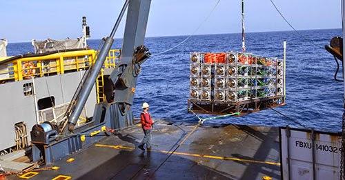 INFN esperimento sottomarino per neutrini Km3NeT