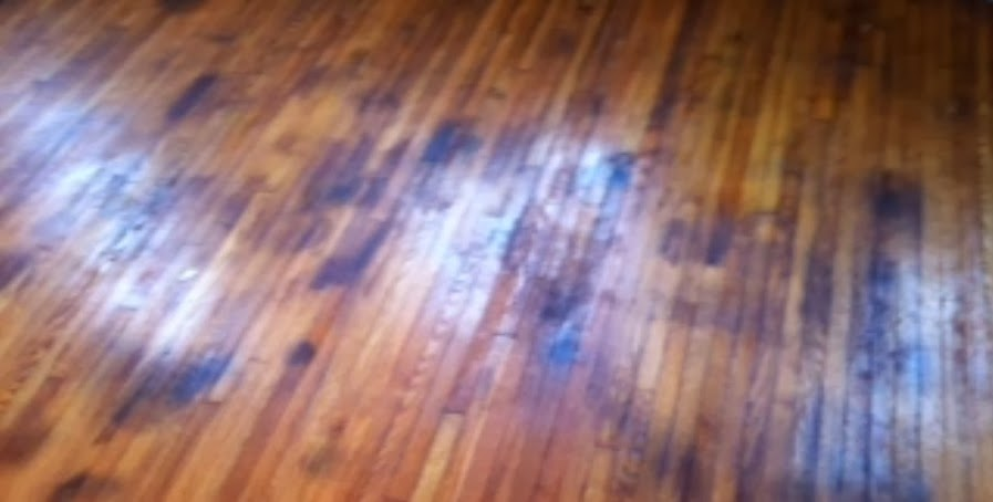 Pet Damage Hardwood Floors Closeup