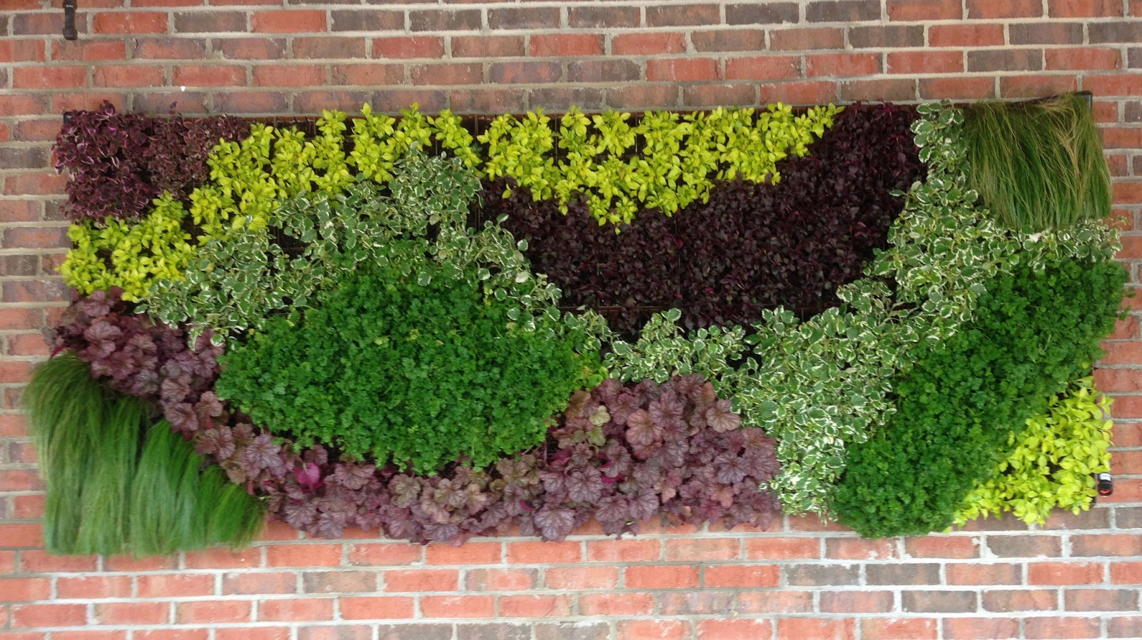 Image result for living walls