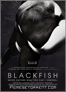 BlackFish Fúria Animal Torrent Dual Audio