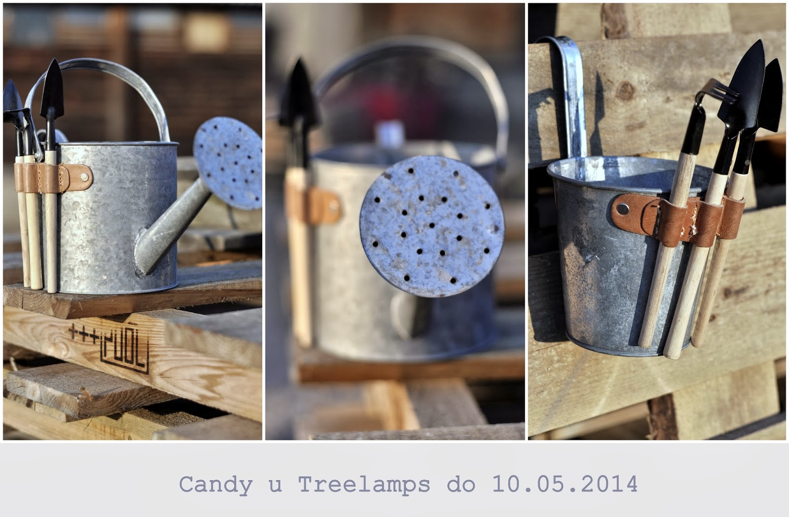 Candy u Treelamps<br><i>10 maja</i>