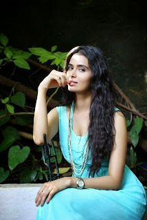Meenakshi Dixit Latest Pictureshoot Stills  cinegallery99 (4).jpg