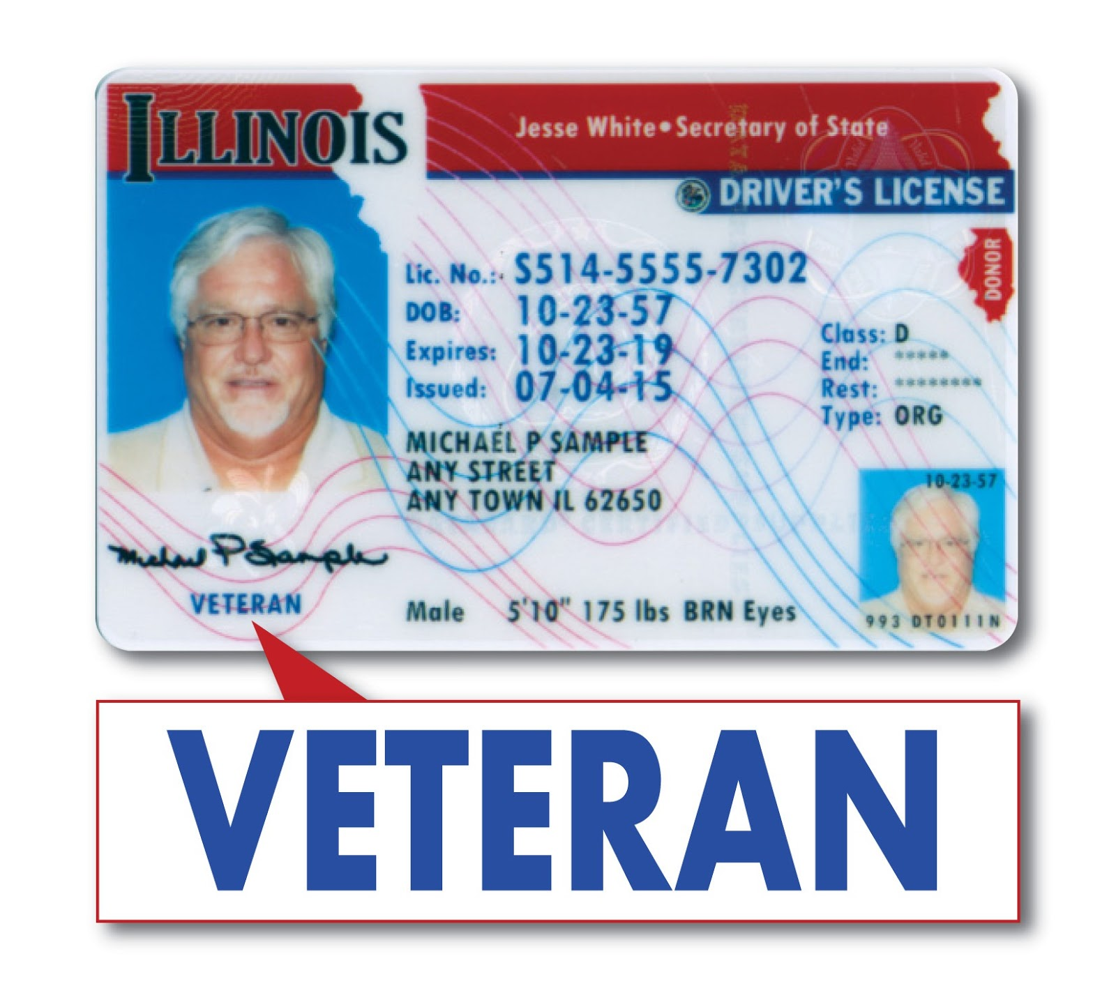 Obtain Wheeler Veterans Able Now Driver's Special To Representative State License Barbara Illinois