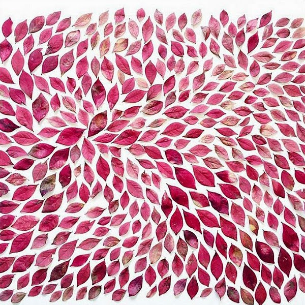 omjsk // Pattern of Pink Leaves
