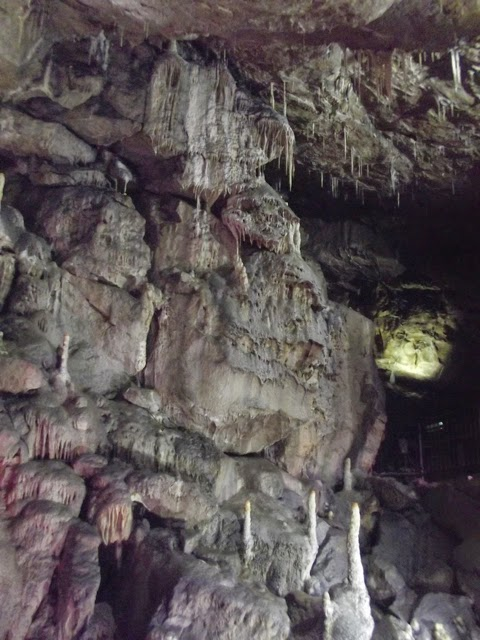 the fastest growing formations in Poole's cavern