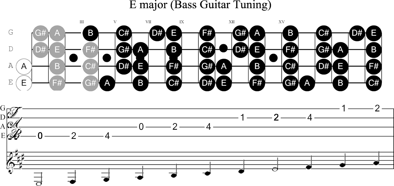 Bass Guitar Chord Chart Pictures to Pin on Pinterest - PinsDaddy