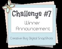 Challenge #7 Winners