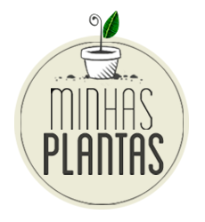 Minhas Plantas